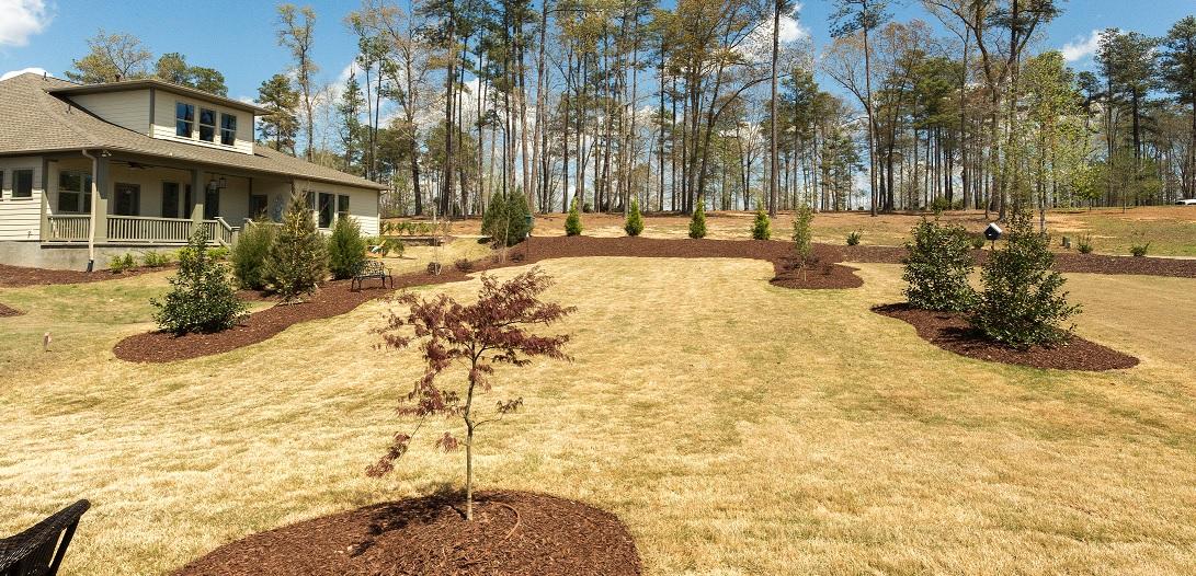 Fall yard and leaf removed near Raleigh Durham, NC
